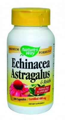 Nature's Way - Echinacea&Astragalus&Reishi / Ехинацея, Астрагалус и Рейши, Брой капсули: 100