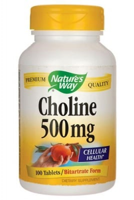 Choline 500 mg 100 tablets Nature's Way / Холин 500 мг. 100 таблетки Nature's Way