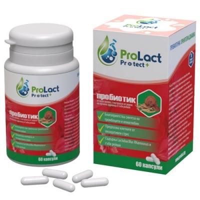 ProLact Protect+ 60 capsules / ПроЛакт Протект+ 60 капсули