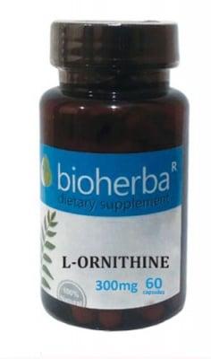 Bioherba L-ornithine 300 mg 60 capsules / Биохерба L- орнитин 300 мг 60 капсули
