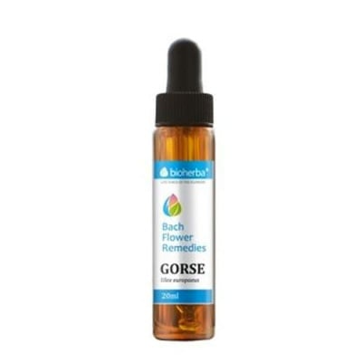 Bioherba Bach Flower Remedies Gorse (Ulex europaeus) 20 ml. / Биохерба капки на доктор Бах Жълтуга (Прищип) 20 мл.