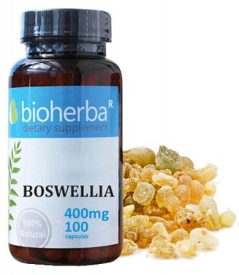 Bioherba Boswellia 400 mg 100 capsules / Биохерба Босвелия 400 мг. 100 капсули