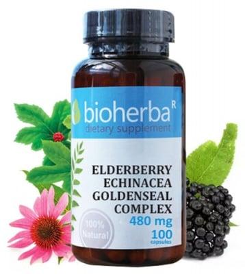 Bioherba Elderberry, echinacea, goldenseal complex 480 mg 100 capsules / Биохерба Бъз, ехинацея, хидрастис комплекс 480 мг. 100 капсули