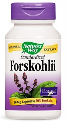 Forskohlii 60 capsules Nature's Way / Форсколий 60 капсули Nature's Way