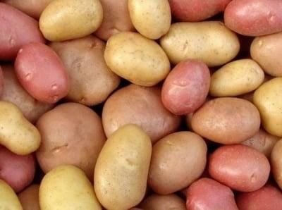 Картофите - една подценявана здравословна храна