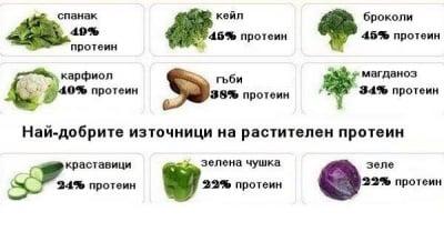 Най-добрите източници на растителен протеин