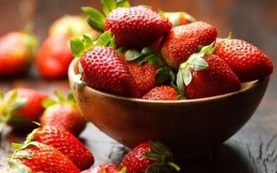 Ягодите - вкусни и изключително полезни за нашето здраве
