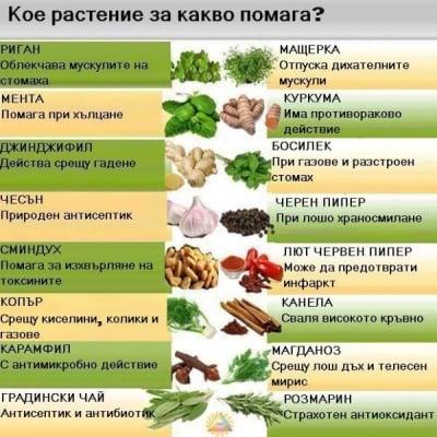 Кое растение за какво помага?