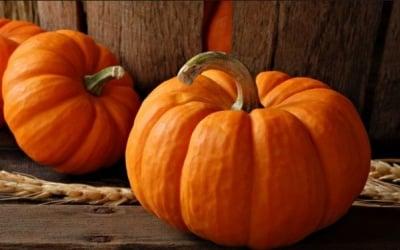 Тиквата - вкусът на есента с много ползи за здравето