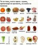 Храни, приличащи на органите, за които са полезни