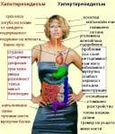 Хипо- срещу хипертиреоидизъм: разпознай симптомите!