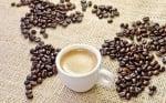 7 любопитни факта за кафето